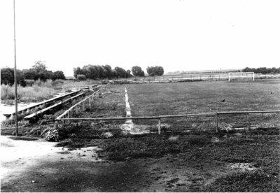 Bild 8 Sportplatz Juni 1950 (2)